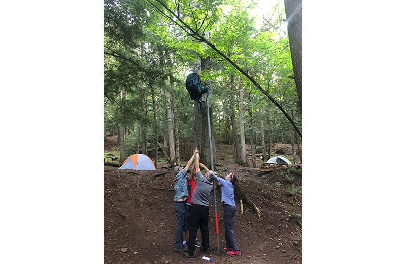 Photo of students raising a pack up a tree