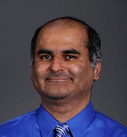 Mir Mahmood, Professor